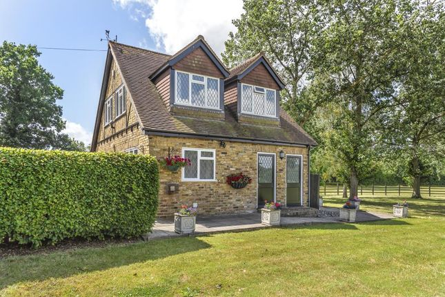Thumbnail Detached house to rent in Ryehurst Lane, Binfield