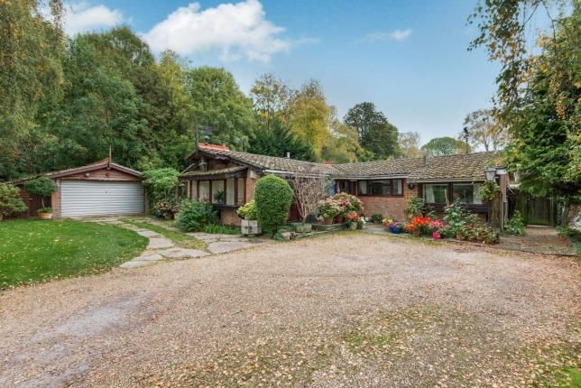Thumbnail Bungalow for sale in Kings Worthy, Winchester, Hampshire