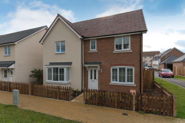 Thumbnail Detached house for sale in Holm Oak Walk, Sholden, Deal