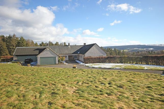 Thumbnail Detached house for sale in Hexham
