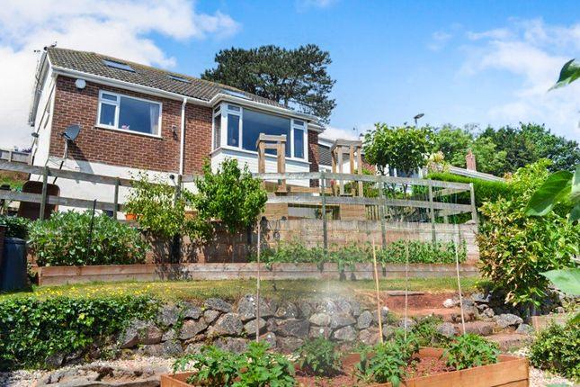 Thumbnail Detached bungalow for sale in Golden Park Avenue, Torquay