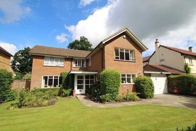 Thumbnail Detached house for sale in Windmill Lane, Bushey Heath WD23.