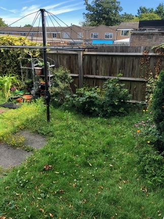 Communal Garden of Salisbury Road, Stevenage SG1