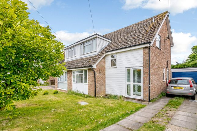 Thumbnail Detached house for sale in Holly Way, Colchester, Essex
