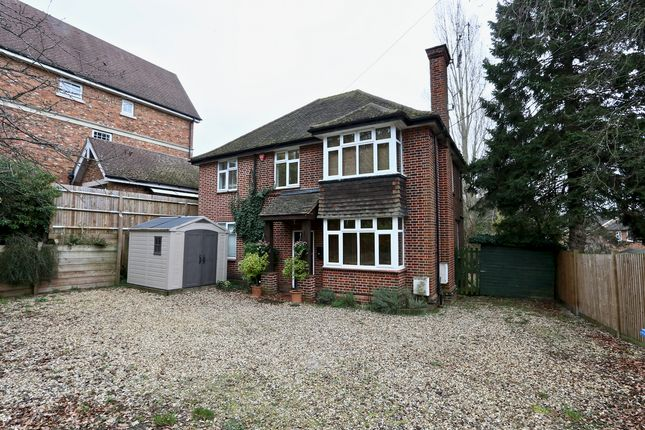 Thumbnail Detached house to rent in Fernbank Road, Ascot
