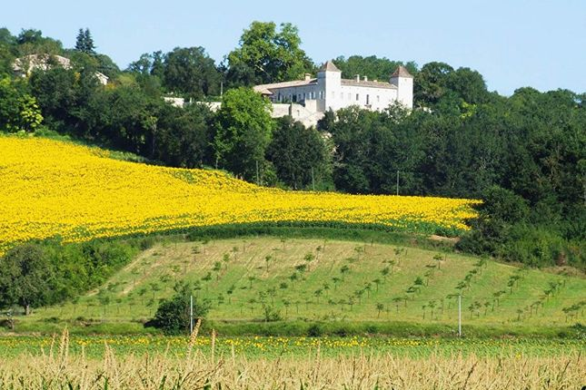 Thumbnail Property for sale in Lauzerte, 82190, France