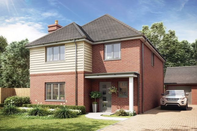 Thumbnail Detached house for sale in Pylands Lane, Bursledon