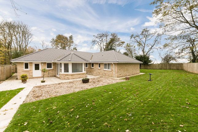 Thumbnail Detached bungalow for sale in Middle Lodge, Park Road, Swarland, Morpeth, Northumberland