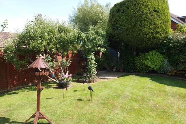 Rear Garden of Lancing Way, Wannock BN26