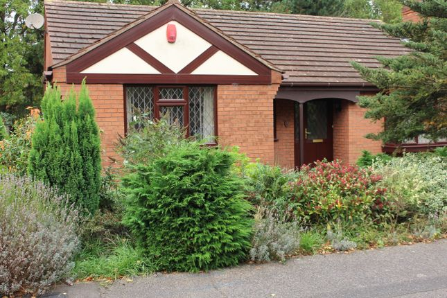 Thumbnail Detached bungalow to rent in Tudor Road, Lincoln
