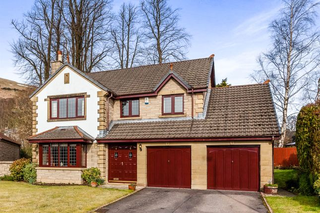 Thumbnail Detached house for sale in Ashley Avenue, Dollar