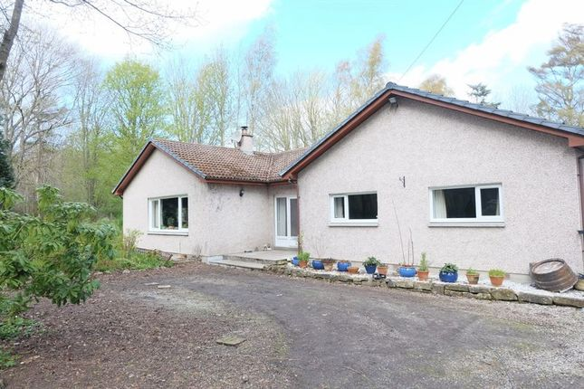 Thumbnail Detached bungalow to rent in Whiskers, Arabella, Tain