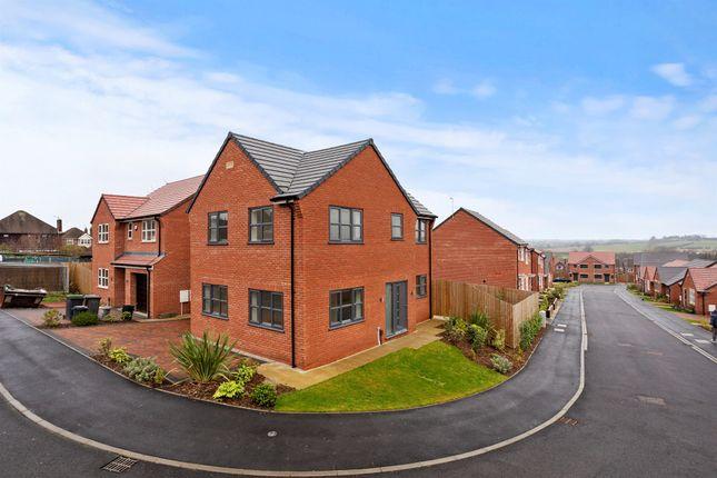 Thumbnail Detached house for sale in Brandyline Gardens, Newthorpe, Nottingham