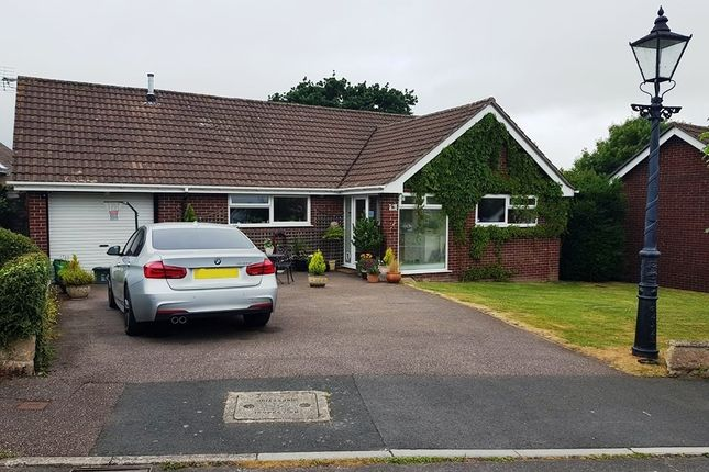 Thumbnail Detached bungalow for sale in St Marys Close, Axminster, Devon