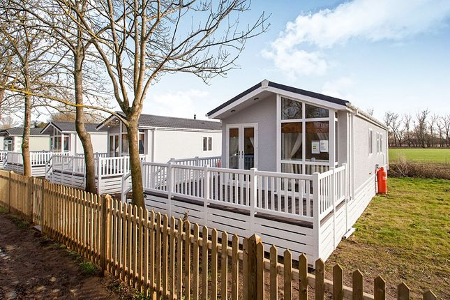 Thumbnail Bungalow for sale in Hampstead Lane, Yalding, Maidstone