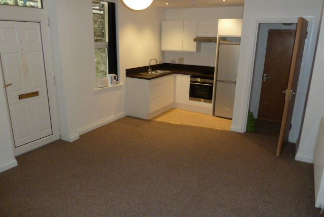 Thumbnail Flat to rent in Whitefield Terrace, Greenbank Road, Plymouth