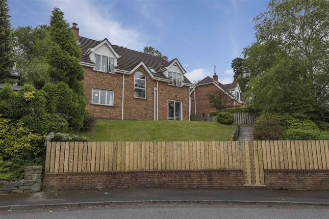 Thumbnail Detached house to rent in Woodridge, Ballynahinch, Down