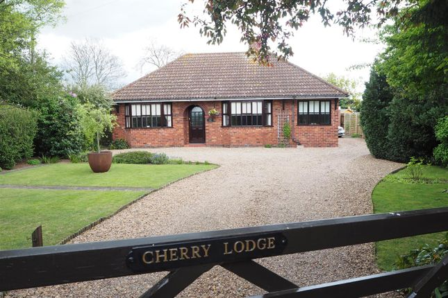 Thumbnail Detached bungalow for sale in 'cherry Lodge', Great North Road, South Muskham