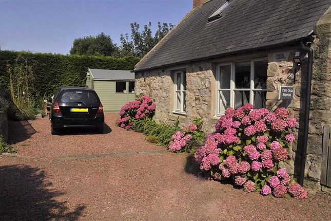 Thumbnail Cottage for sale in Bowsden, Berwick Upon Tweed