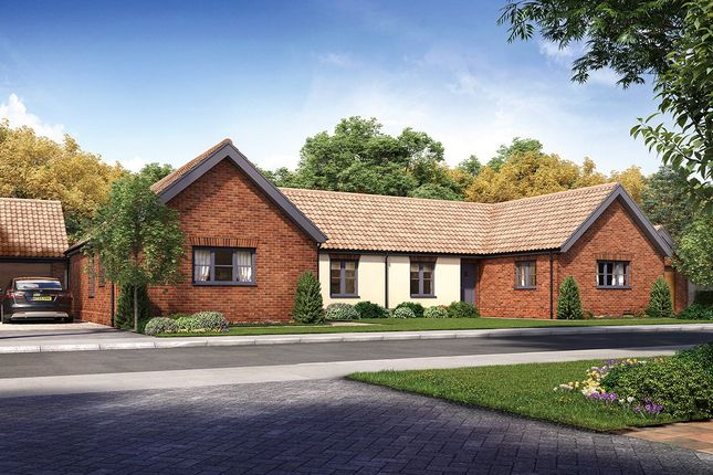 Thumbnail Semi-detached bungalow for sale in Horning Road, Hoveton, Norwich, Norfolk