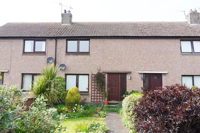 Thumbnail Terraced house for sale in The Avenue, Eyemouth