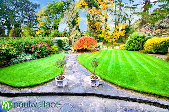 Rear Garden of The Oval, Broxbourne EN10