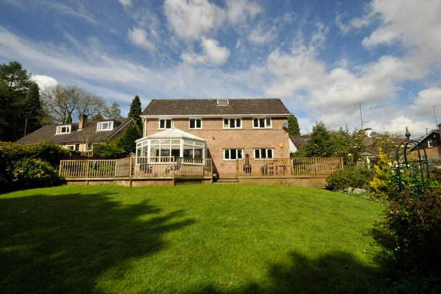 Thumbnail Detached house for sale in Harewood Road, Holymoorside, Chesterfield