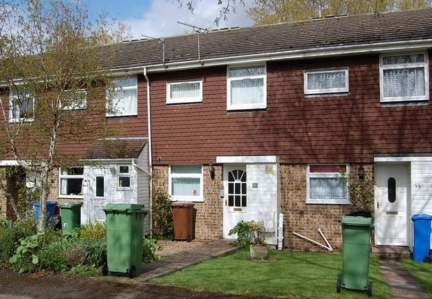 Thumbnail Terraced house to rent in Stanhope Avenue, Sittingbourne