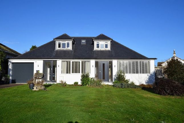 Thumbnail Bungalow for sale in North Rocks Road, Paignton