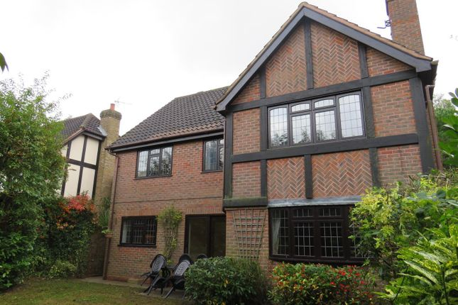 Thumbnail Property to rent in Northgate, Thorpe End, Norwich