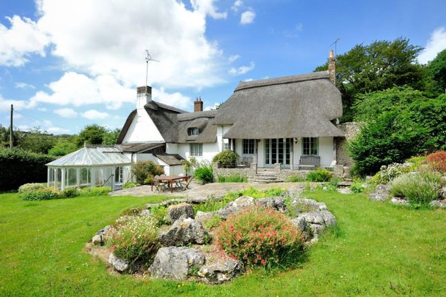 Thumbnail Detached house for sale in Winterborne Stickland, Blandford Forum, Dorset