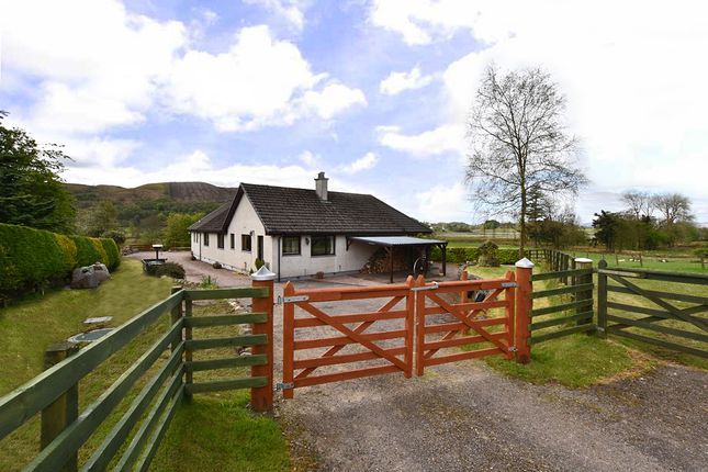 Thumbnail Detached bungalow for sale in Achosrigan, Appin