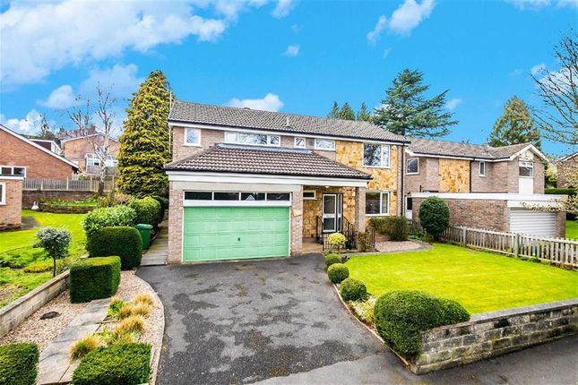 Thumbnail Detached house for sale in 42, Silverdale Road, Ecclesall