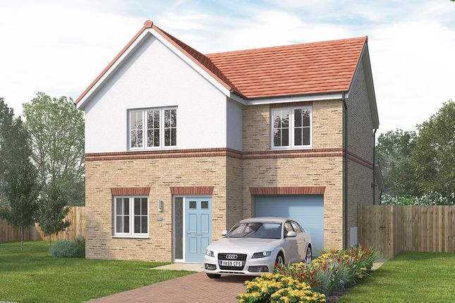 "3 bedroom detached house for sale in ""The Melton"" at Wellfield Road North, Wingate"