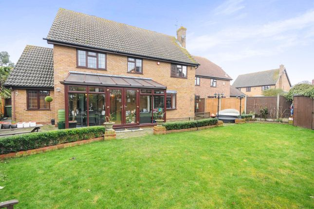 Thumbnail Detached house for sale in Yew Tree Close, Hatfield Peverel, Chelmsford