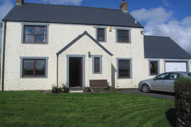 Detached house to rent in Walton East, Clarbeston Road