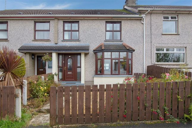Thumbnail Terraced house for sale in Northland Road, Moneymore, Magherafelt, County Londonderry