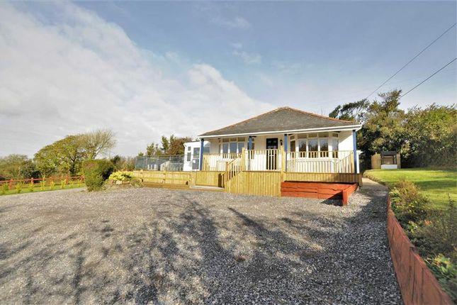 3 bed detached bungalow for sale in Bridgerule, Holsworthy, Devon