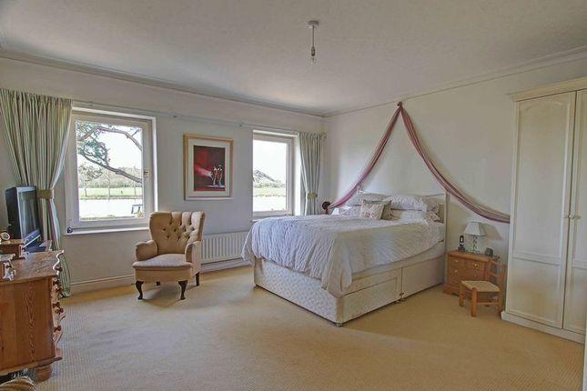 Master Bedroom On Riverside