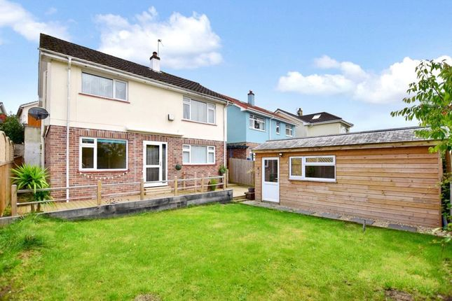 Thumbnail 4 bed detached house to rent in Fern Road, Newton Abbot, Devon