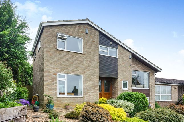 Thumbnail Detached house for sale in Pennyfields, Bungay