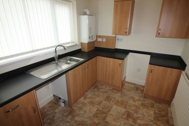 Thumbnail Terraced house to rent in A J Cook Terrace, Shotton Colliery, County Durham