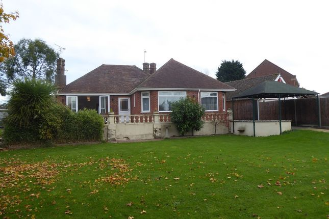 Thumbnail Detached bungalow to rent in Winterton Road, Hemsby, Great Yarmouth