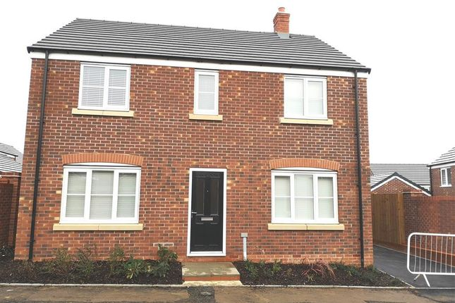 Thumbnail Property to rent in Coton Park Drive, Rugby