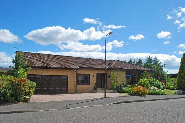 Thumbnail Detached bungalow for sale in 13 Millar Place, Stenhousemuir