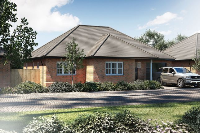 Thumbnail Detached bungalow for sale in The Dovecote, Off High Street, Drayton