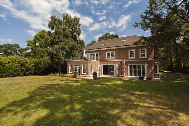 Thumbnail Detached house for sale in Crooksbury Road, Farnham, Surrey