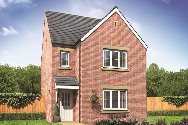 "Thumbnail Detached house for sale in ""The Lumley"" at Ostrich Street, Stanway, Colchester"