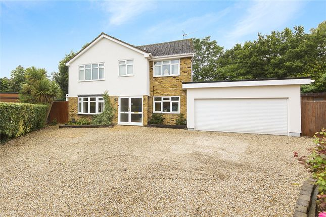 Thumbnail Detached house for sale in Bishops Court Gardens, Chelmsford, Essex