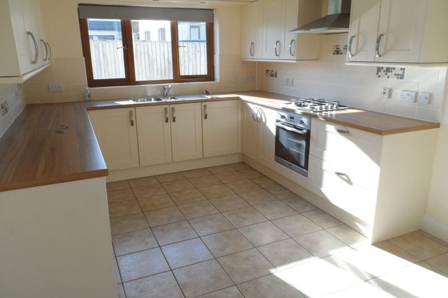 Thumbnail Bungalow to rent in Dol Y Dderwen, Llangain, Carmarthen